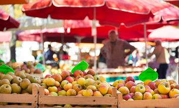 Paramount Properties Blog - 5 Ottawa Farmers' Markets you need to visit this summer